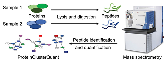 Analysis-of-polypeptide-characterization.png
