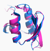 peptide-n-terminal-modification.png