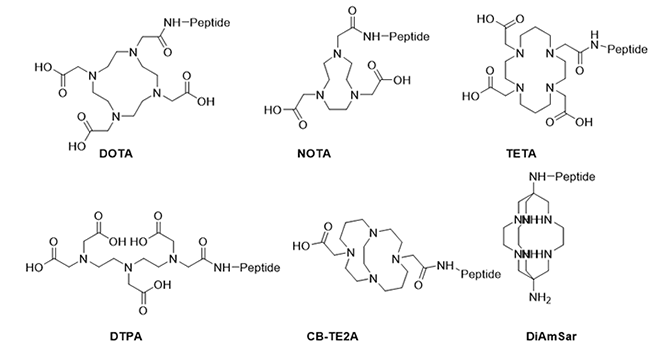 Peptides conjugated to metal chelates-1-1.png