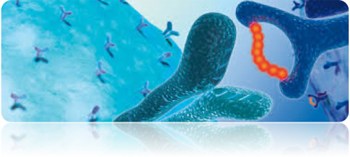 Special antigen peptides services